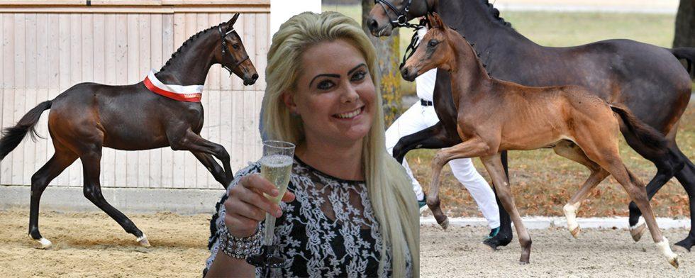 Från vänste Remember Me inropad av Anna Zibrandtsen och till höger Nettstutteriets Fazza. Foto: Wiegaarden / Kim C Lundin