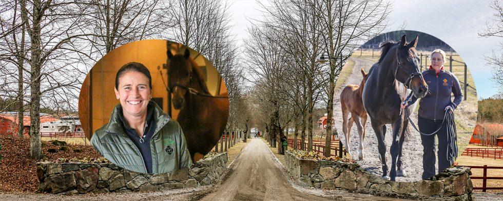 Lövstas två hästgrenar, tävlingsverksamhet i regi tinne Vilhelmson Silfvén och barnkammare på Stjärnborg med Malin Cohlin.