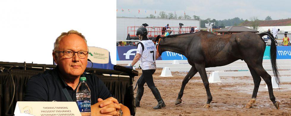 Det var en 20-årig häst från Nya Zealand, här efter flera loopar på banan. Foto: Kim C Lundin