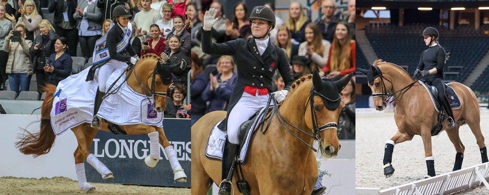 Cathrine Dufour och Atterupgaards Cassidy i Göteborg och i Stockholm. Foto: Kim C Lundin