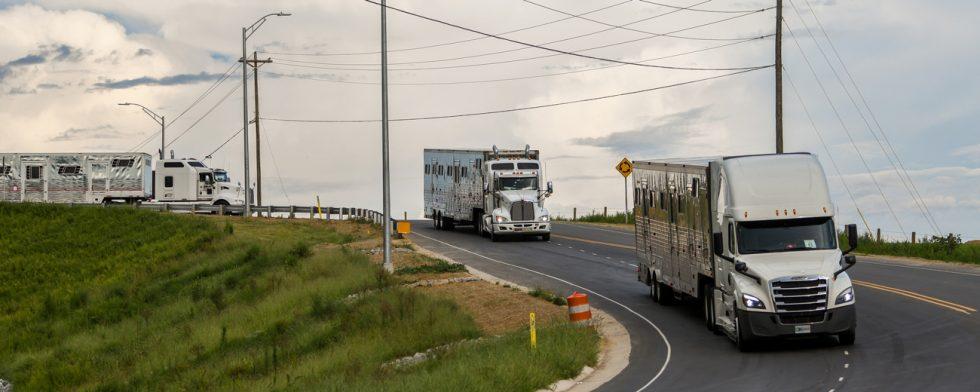 Lastbilarna rullar iväg mot Tryon Foto: FEI/Tori Repole