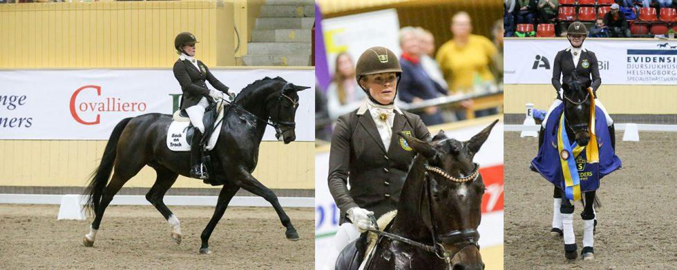 Jeanna Högberg med underbara Astoria vann på 88 procent, uppfödare Christina Olssons andra seger för dagen. Foto: Fredrik Jonsving.