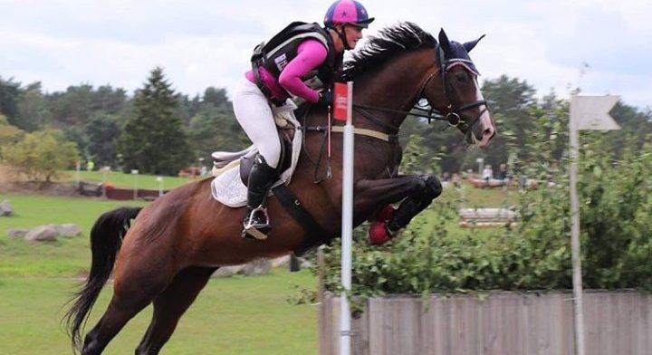 Min rosa outfit 👍 Hästen på bilden är Bossanova, 2018 breeders vinnare för 5åriga fälttävlanshästar.  Foto Pontus Hugosson