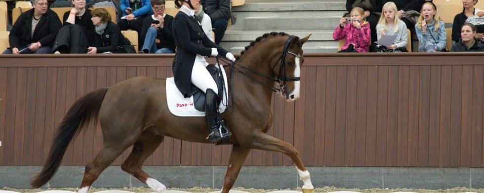Anna Kasprzak och Quarton på Blue Hors. Foto: Aafoto.dk Per Torp