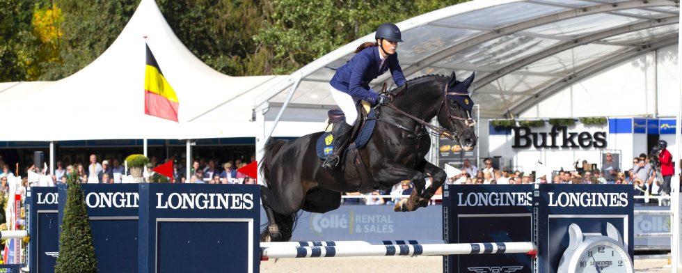 Mr Vain GJ med Victoria Almgren i sadeln. Mr Vain är en godkänd och flitigt använd hingst. Foto: Fredrik Jonsving