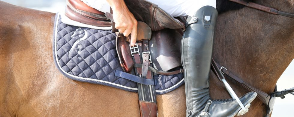 Vi är noga med att träna hästen. Men kommer du ihåg din egen träning? Foto: Fredrik Jonsving