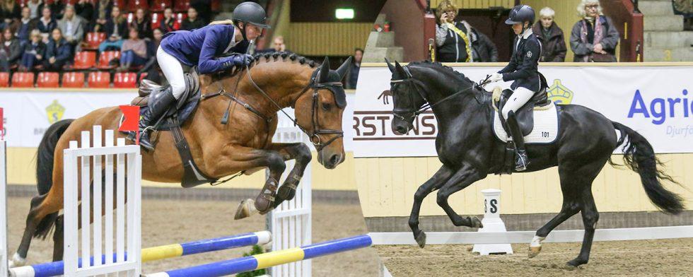 Viking Hästak och Linn Hörnvall respektive Affendi och Rebecca Maleon under Breeders Trophy Foto: Fredrik Jonsving / Kim C Lundin