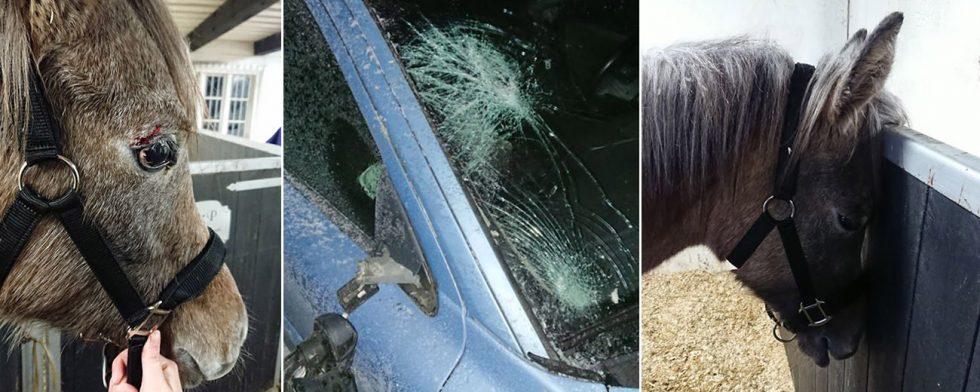 Smällen gav omfattande skador på bilen. Foto: Privat