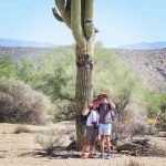 Syskonen Jenny och Thomas Christenson har vid flera tillfällen åkt till USA för att studera de vilda mustangerna.