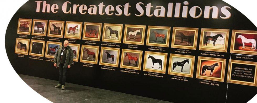 Thomas Bach Jensen och alla hans hingstporträtt i den stora Wall of fame som byggts upp Foto: Horse2rider Charlotte Mogensen