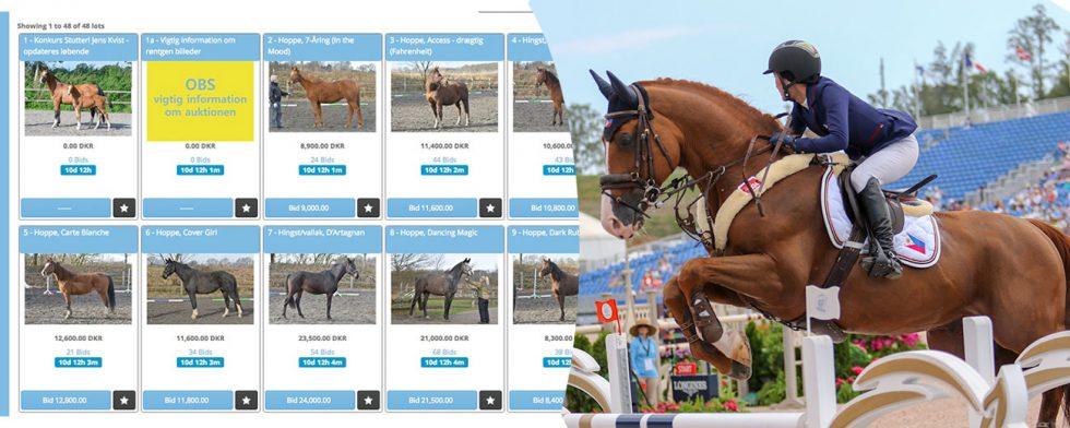 Skärmbild från Campden Auktioner och Maximillian på VM 2018 foto: Kim C Lundin