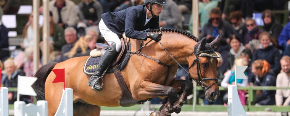 Andre Brandt - Viking Hästak (SWB) Foto: Fredrik Jonsving