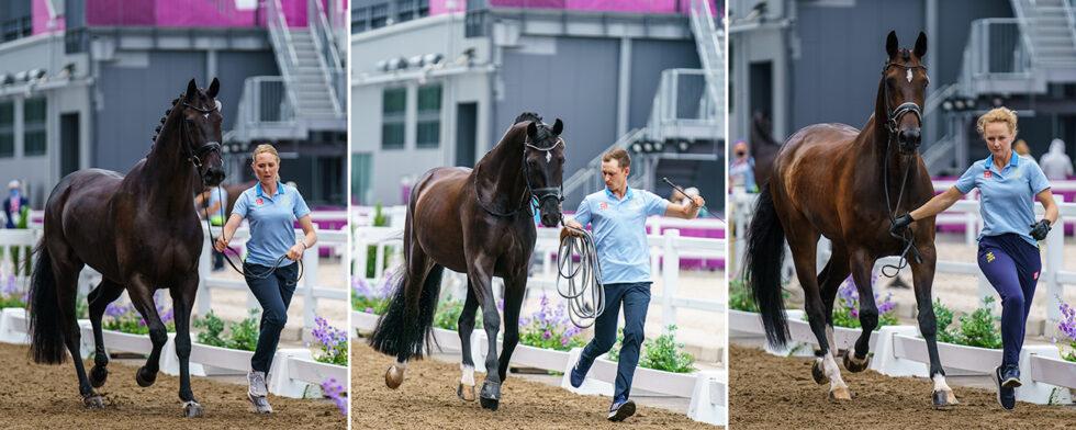 Två av tre svenska ekipage visar framhovarna idag och först ut är Dante Weltino och Therese Nilshagen Foto: KimC.nu by Ateni AB